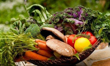 Growing numbers of meat eaters choosing a more plant-based diet | Kickin' Kickers | Scoop.it