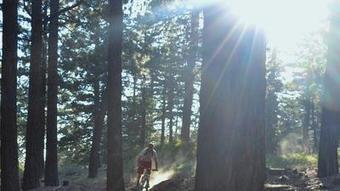 Big Gear: Eight-mile trail opens, first in two decades - Los Angeles Times | Big Bear Real Estate | Scoop.it
