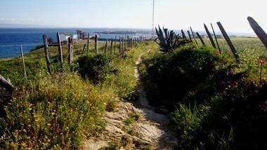Senderismo: Tambor y Acantilados de Tarifa | SENDERISMO EN MALAGA y otros lugares de Andalucia | Scoop.it