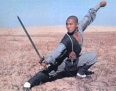 Shaolin Kung Fu, Shaolin Martial Arts, Shaolin Wushu | Asia, north and South America | Scoop.it