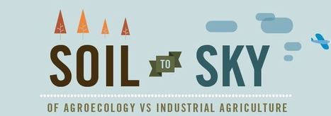 Soil to Sky of Agroecology vs Industrial Agriculture | Washtenaw Food News | Scoop.it