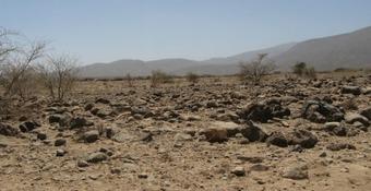 Climate Adaptation Resource Guide for Dryland & Semi-Arid Areas | weADAPT | Comunicación, Conocimiento y Cultura del Agua | Scoop.it