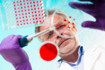 Bioéthique : la loi relative à l'autorisation de la recherche sur l'embryon est parue au JO | ECJS : Bioéthique | Scoop.it