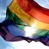 Homosexualité et homophobie dans le monde
