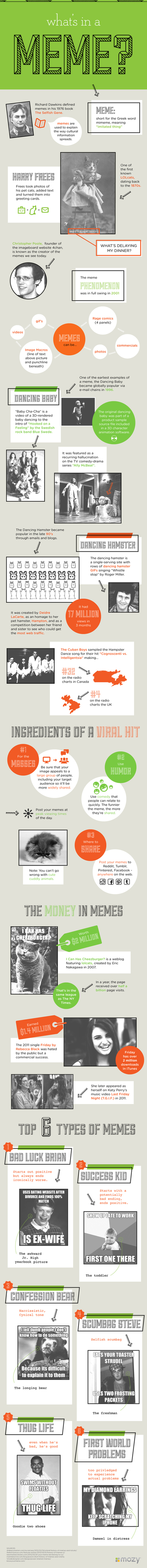 What's in a Meme? - an Infographic | Social Media Butterflies | Scoop.it