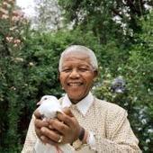 Mandela murió durante el estreno del film de su vida - Lainformacion.com | BIOGRAFIA DE NELSON MANDELA | Scoop.it