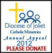 Young Adult Ministry, Diocese of Joliet | 20's and 30's | Scoop.it