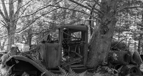 the truck and the tree | Abandoned Houses | Scoop.it