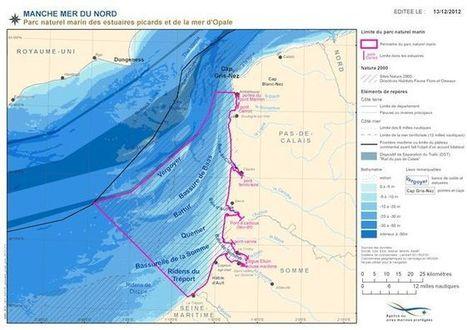 Naissance du parc naturel marin des estuaires picards et de la côte d'Opale - Le marin | Le territoire français en mouvement | Scoop.it