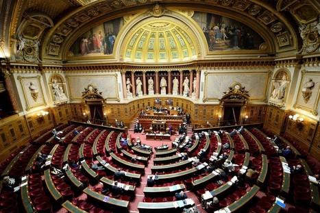 Loi Travail : le Sénat a fini d'examiner le texte et l'a durci | Droit des contrats de travail en France | Scoop.it