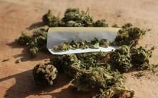 Colorado Crime Rates Down 14.6% Since Legalizing Marijuana | Criminal Justice in America | Scoop.it