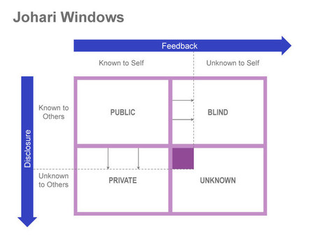 Johari Window | Orientar | Scoop.it