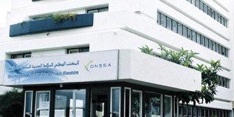 Produits végétaux : l'ONSSA renforce le contrôle - La Vie Éco   Le charançon rouge du palmier sous surveillance !   Scoop.it