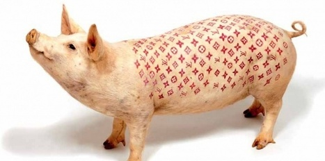 De l'art ou du cochon? Le non-art contemporain en 6 dogmes | Socialart | Scoop.it