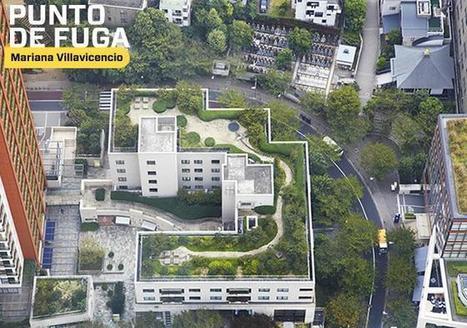 Un fantasma 'espanta' a los proyectos de azoteas verdes - soluciones - Obrasweb.mx | Jardines Verticales y azoteas verdes. | Scoop.it