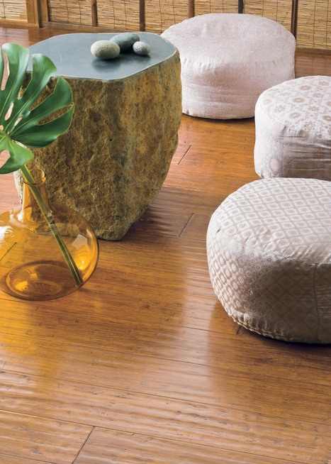 Flooring 101: A Guide to Bamboo Floors   Sustainable Homes   Scoop.it