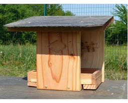 Accueillir les oiseaux dans son jardin | Jardin Biodiversité | Le scoop it officiel de la mésange bleue | Scoop.it
