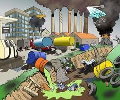 contaminaciones de los ecosistemas por la intervencion de las industrias | ecosistemas | Scoop.it