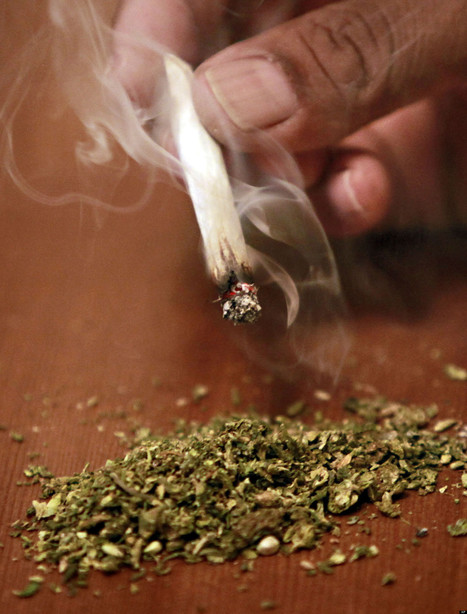 Another State Shows Broad Support For Pot Legalization (USA) | Alcohol & other drug issues in the media | Scoop.it