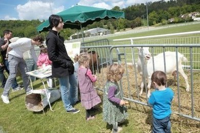 Un mini-salon de l'agriculture biologique | Agriculture en Dordogne | Scoop.it