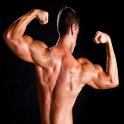 Build Masculine Body Naturally! | there sahiser | Scoop.it