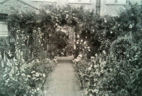 Life on Pig Row: The Rise of Vintage: Resurrecting the Front Garden | Transition and Permaculture | Scoop.it