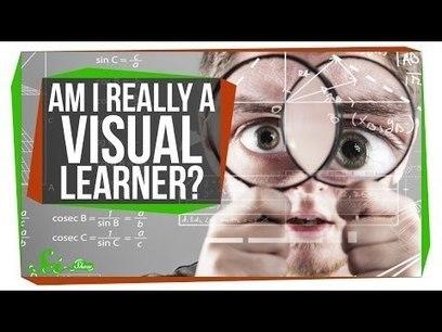 Nog een mooie video over de mythe van leerstijlen   Master Leren & Innoveren   Scoop.it