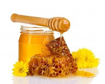 Tipasa : Cérémonie de clôture de la Fête du miel - El Watan   Abeilles, intoxications et informations   Scoop.it