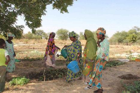 Sahel: en dépit du renforcement de l'assistance, la crise alimentaire persiste, selon le PAM | Questions de développement ... | Scoop.it