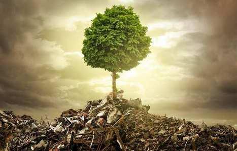 Près d'un quart des Français se désintéressent de l'environnement | Chronique d'un pays où il ne se passe rien... ou presque ! | Scoop.it