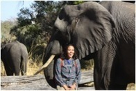 Elephants Without Borders » Blog Archive » Oh, the stress of it all… Tanya explains | Student Politics | Scoop.it