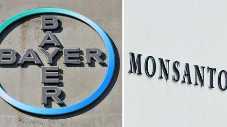 """Bayer - Monsanto : le """"mariage infernal"""" 