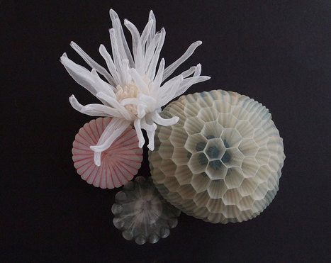 #Sea inspired #Jewelery Made From Translucent #Fabric By #Japanese #Artist. #art | Luby Art | Scoop.it