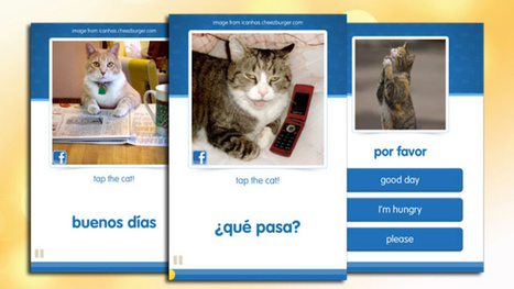 CatAcademy Teaches You a Foreign Language with Funny Cat ... | Ipad in Spanish class | Scoop.it