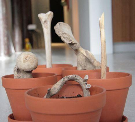 Jota Castro: Still life / Vanity   Art Installations, Sculpture, Contemporary Art   Scoop.it