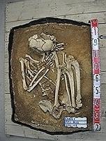 Taiwan : Un squelette du Néolithique exhumé à Matsu | World Neolithic | Scoop.it