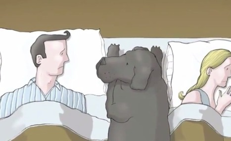 """What Is Depression? Let This Animation With A Dog Shed Light On It.   """"...And the clocks were striking thirteen."""" (The Psychology of Oppression)   Scoop.it"""
