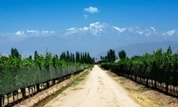 #Argentina 's Mendoza #wine route: top 10 guide | Vitabella Wine Daily Gossip | Scoop.it