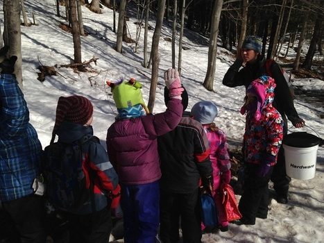 Ottauquechee Kindergarten Takes To The Woods - Vermont Public Radio | Multimodal Literacy with iPod touch | Scoop.it