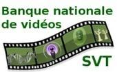 Banque nationale de vidéos sur les SVT | CDI RAISMES - MA | Scoop.it