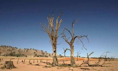 Learning From Australia's Drought Lessons to Avoid a Mad Max Future | Conformable Contacts | Scoop.it