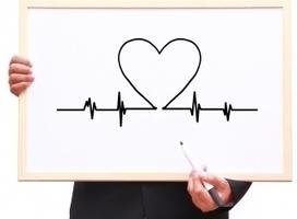 Пульсовая диагностика функционального состояния | Биология | Scoop.it