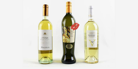 Le Marche Wine in the US Market: 2013 Marchetti Verdicchio dei Castelli di Jesi | Wines and People | Scoop.it