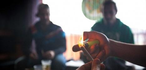 Le cannabis pourrait favoriser la fabrication de faux souvenirs | Veille scientifique Neuroscience | Scoop.it