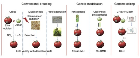 A proposed regulatory framework for genome-edited crops : Nature Genetics | plant molecular biology | Scoop.it