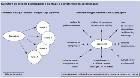 Best of 2013 : apprenance et guidance : une nouvelle vision de la formation | Le blog de C-Campus | Tutorat, présence et travail collaboratif en ligne | Scoop.it