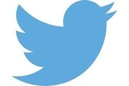 23 millions de Twittos actifs sont des robots [MAJ]   #Digital #Social   Scoop.it