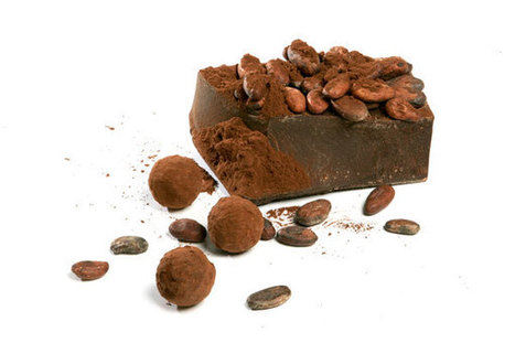 Are Cocoa Beans An Endangered Species? | Chouchoute Chocolaterie | fair trade chocolate | Scoop.it