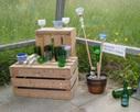 Pusch – so wird Umweltschutz Realität | Beispiele von Aktionen in Gemeinden | German A-level topics | Scoop.it