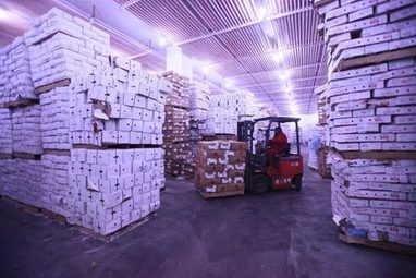 More Chinese firms eye potential of cold chain logistics | Global Logistics Trends and News | Scoop.it